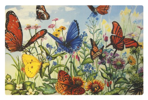 Plastic Flowers Butterfly - SBF Gifts Butterfly Flower Garden Washable Plastic Vinyl Placemats Set of Four