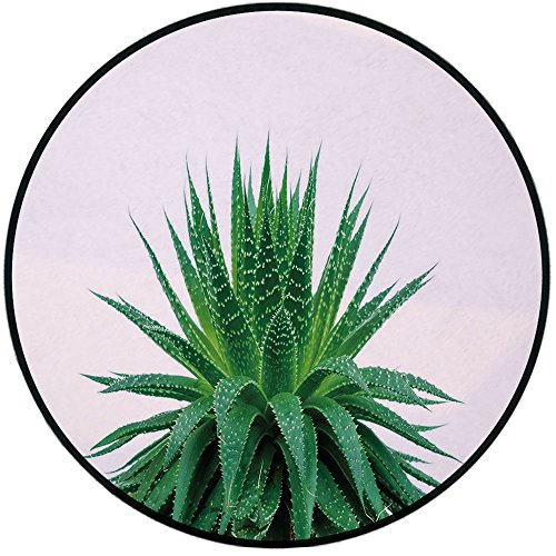 Printing Round Rug,Plant,Medicinal Aloe Vera with Vibrant Colors Indigenous Species Alternative Natural Remedy Mat Non-Slip Soft Entrance Mat Door Floor Rug Area Rug For Chair Living Room,Fern Green