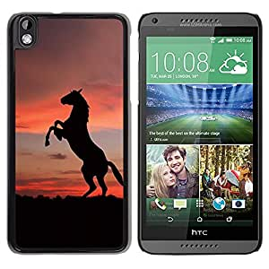 Impact Case Cover with Art Pattern Designs FOR HTC DESIRE 816 SUNSET MUSTANG HORSE Betty shop
