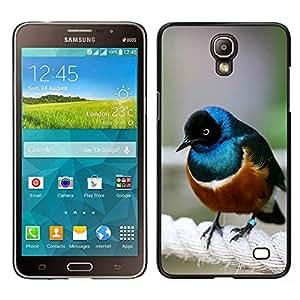 [Neutron-Star] Snap-on Series Teléfono Carcasa Funda Case Caso para Samsung Galaxy Mega 2 [Bird Blue Brown Sea Nature Cute Small]