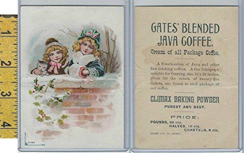 Victorian Card, 1890's, Gates Coffee, Detroit, Girls, Wall, Cat