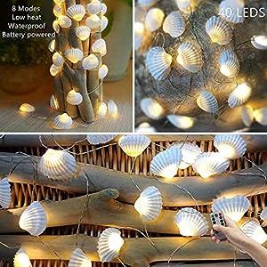 51d-w2oifvL._SS300_ Best Seashell Wedding Decorations