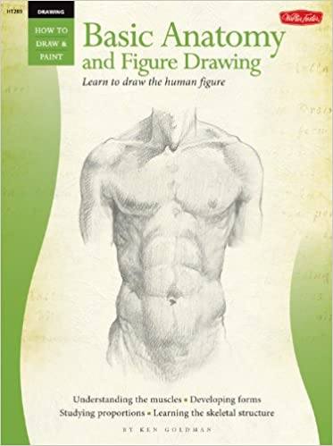 Drawing Basic Anatomy And Figure Drawing Learn To Draw The Human