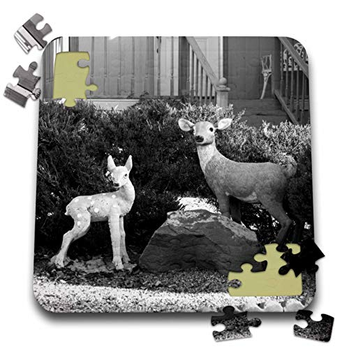 - 3dRose Jos Fauxtographee- Black and White Deer - Deer in black and white near a boulder in a yard - 10x10 Inch Puzzle (pzl_288933_2)