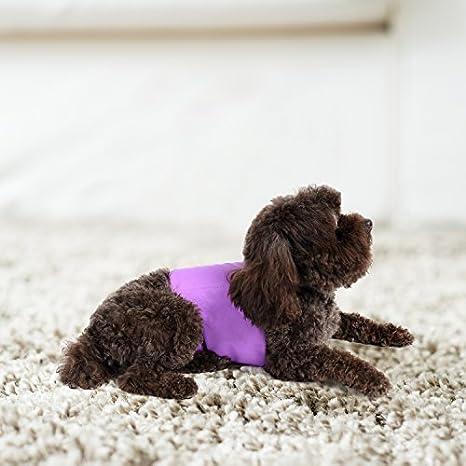 Pet Magasin - Fundas de Vientre para Perros de Lujo Extra cómodas (Pack de 3) - Pañales Vientre Lavables y Reutilizables para Perros Macho, Gatos, ...