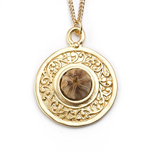 Best Christmas Gift, 14K gold plated brass mandala with the re-blooming Blessing Flower- Rose of Bethlehem, Christmas Gift for wife, Christmas Gift for daughter by The Blessing Flower (Image #1)