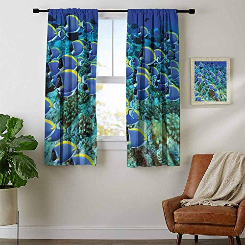 - Mozenou Ocean, Curtains with Valance, School of Powder Blue Tang Fishes in The Coral Reef Maldives Deep Seas, Curtains Kids Room, W63 x L45 Inch Aqua Blue and Yellow