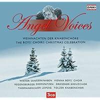 Angel Voices: Boys Choirs Xmas Celebration [Importado]