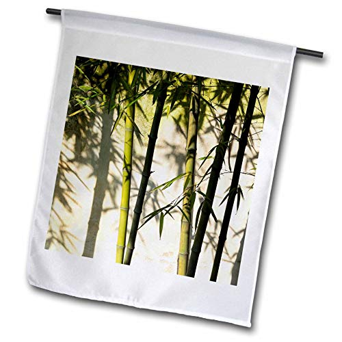 3dRose Danita Delimont - Patterns - Bamboo Casting Shadow on The Wall in Garden, Suzhou, Jiangsu, China - 12 x 18 inch Garden Flag - China Jiangsu Suzhou