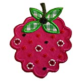 2ecussons Applique Raspberry 6x7cm T-Rex 7x9cm Iron-on Embroidered Patch Embroidered for Clothing Child Baby Women's Jacket with Jeans Design TrickyBoo Zurich Switzerland For France