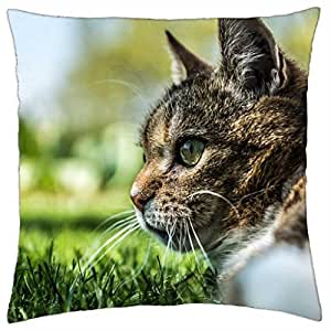 Cat - Throw Pillow Cover Case (18