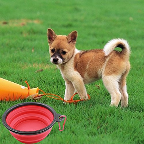 Collapsible Pet Travel Bowl, Water Feeder and Food Grade Silicone Environmental Protection Material 4 Pack by Pure Acoustics