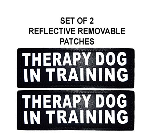 Doggie Stylz Set of 2 Reflective Therapy Dog in Training Velcro Patches for Service Dog Harnesses & Vests.