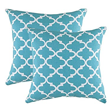 TreeWool, Cotton Canvas Trellis Accent Decorative Throw Pillowcases (2 Cushion Covers; 18 x 18 Inches; Turquoise & White)