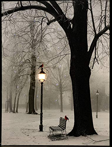 - Oak Street Winter Cardinals on Lamppost in The Park LED Art 16