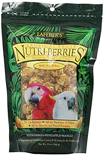 Lafeber's Gourmet Tropical Fruit Nutri-Berries for Macaw / Cockatoo 10 oz (Tropical Cockatoo)
