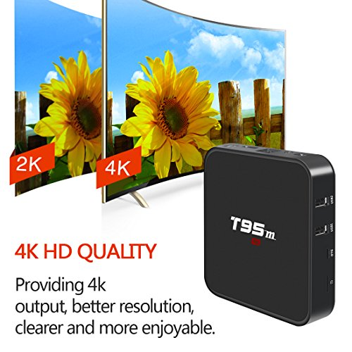 Android 7.1 TV Box, HAOSIHD T95M Smart Internet TV Box with 2GB RAM 16GB ROM, Amlogic S905X Quad Core 64 Bit WiFi Support 4K Full HD by HAOSIHD (Image #3)