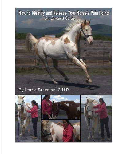 How to Identify and Release Your Horse's Pain Points: An Owner's Guide (How To Buy Ch compare prices)
