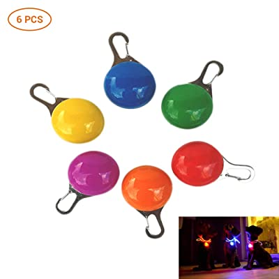 6 Piezas LED Perro Redondo Día Brillante Noche Seguridad Anti Perdido Brillante Brillante Collares para Perros: Hogar