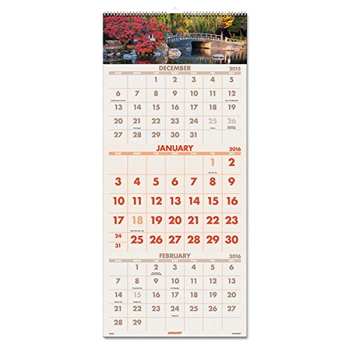 at-A-Glance DMW50328 Scenic Three-Month Wall Calendar 12 x 27, 2019