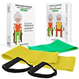 Healthy Seniors Chair Exercise Program with two resistance bands, handles and printed exercise...