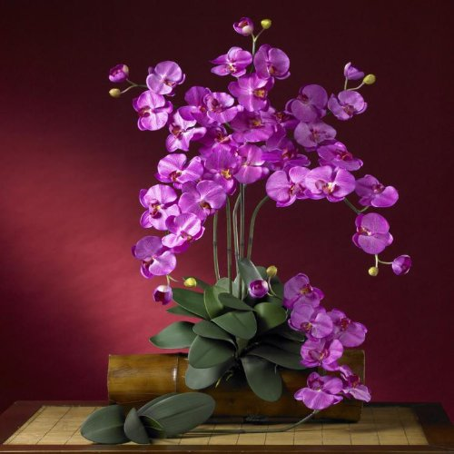 Nearly-Natural-Home-Indoor-Decorative-Tabletop-Fancy-Phalaenopsis-Silk-Orchid-Flower-With-Leaves-6-Stems-Orchid