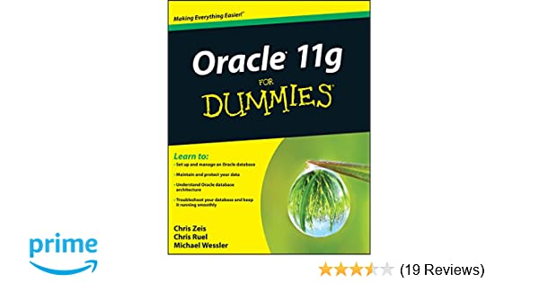 Oracle 11g for Dummies: 9780470277652: Computer Science Books