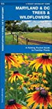 Maryland & DC Trees & Wildflowers: A Folding Pocket Guide to Familiar Species (A Pocket Naturalist Guide)