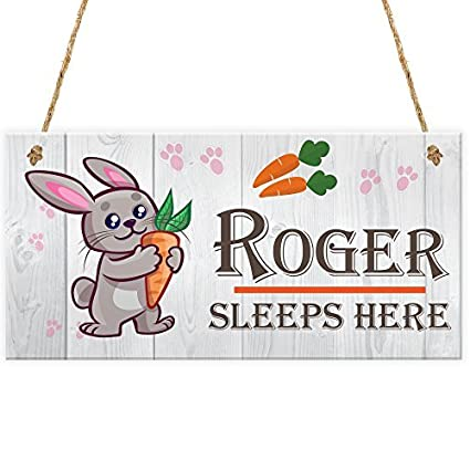 Amazon com: Funny Hanging Sign Decor Wooden Plaque with
