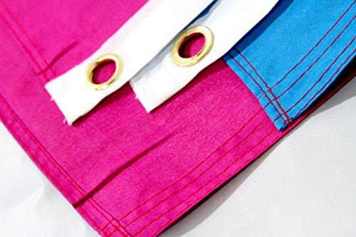 Pansexual Rainbow Lgbt Polyester 3X5 Foot Flag Gay Lesbian -2830