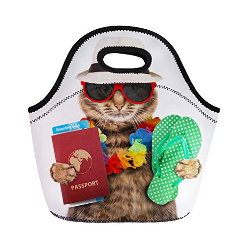 Tinmun Lunch Tote Bag Suitcase Funny Cat Passport and Airline Ticket Travel Visa Reusable Neoprene Bags Insulated Thermal Picnic Handbag for Women Men (Airline Hawaii Tickets)