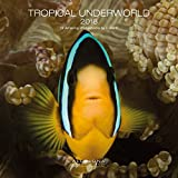 2018 Tropical Underworld Wall Calendar