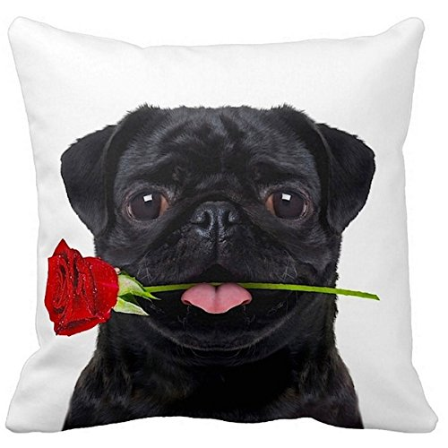Black Pug Pillow (Pug Black With a Rose 16-inch Throw Pillow)