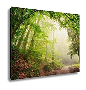 Amazon.com: Ashley Canvas, Natural Archway Of Trees, Kitchen Bedroom ...