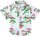 RAISEVERN Boys Pink Flamingo Dress Shirt Short Sleeve Cartoon Cute Tropical Leaves Hawaiian Button-Down Shirts(3-4T)