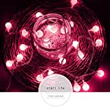 DMZ String Light Curtain House Indoor Decor Lamp Striking Figurine Lamps with 100 LED Beads Christmas New Year Wedding Holiday (C)