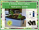 DWC Hydroponic System #10 6-site by H2OtoGro