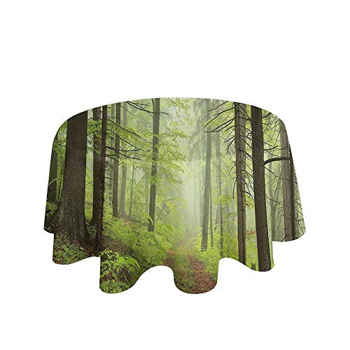 Outdoor Waterproof Anti-Wrinkle no Pollution Trail Trough Foggy Alders Beeches Oaks Coniferous Grove Hiking Theme Table Cloth D51 Inch Pale Green Pale Yellow ()