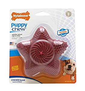 Pet Supplies : Pet Chew Toys : Nylabone Just for Puppies