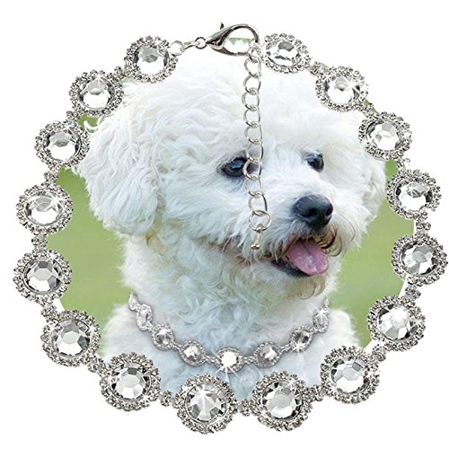 JD Million shop Pearl Diamond pet Dog Collar Dog Party Necklace Training Outdoor Comfortable Dog Necklace For Pet PDA3999