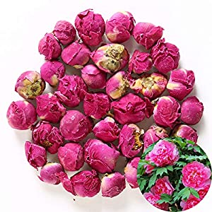 Silk Flower Arrangements TooGet Fragrant Peony Ball Paeonia lactiflora Natural Dried Peony Flowers Wholesale, Top Grade - 4 OZ