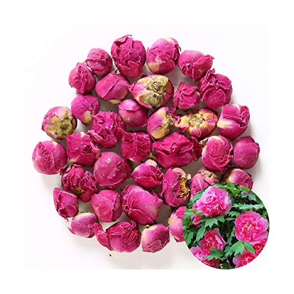 TooGet Fragrant Peony Ball Paeonia lactiflora Natural Dried Peony Flowers Wholesale, Top Grade – 4 OZ