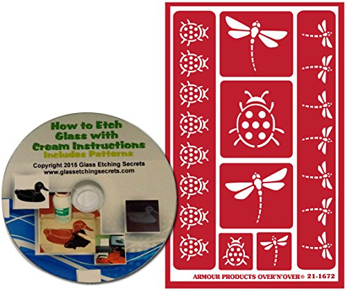 Lady Bug & Dragonfly Stencils for Glass Etching or Painting, Reusable + Free How to Etch CD ()