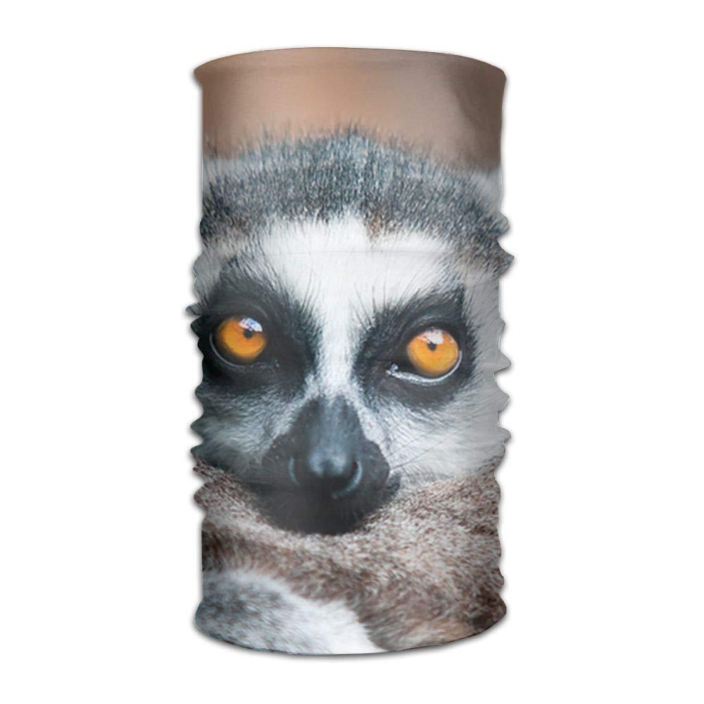 Mabaoyu Ring Tailed Lemur Unisex Versatile Headband Bandanas Headwear Balaclava Neck Gaiter Moisture Wicking UV Protection for Sport Activities