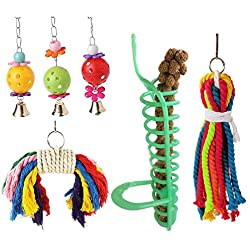 Newstrength Bird Chewing Toys,6Pcs Ball Swing Spiral Feeder Bird Parakeet Hanging Parrot Pet Toy Cage Decor Random Color