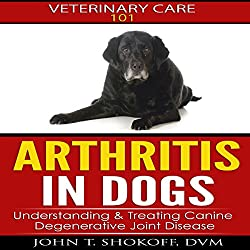 Arthritis In Dogs: Understanding & Treating Canine Degenerative Joint Disease