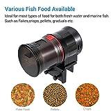 NICREW Automatic Fish Feeder, Moisture-Proof Fish