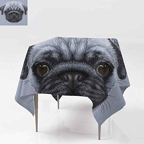 DUCKIL Oil-Proof and Leak-Proof Tablecloth Realistic Style Detailed Young Dog with Cute Giant Eyes Pure Breed Pug Blue Backdrop Great for Buffet Table W54 xL54 Slate Blue (Slate Blue Tabletop Buffet Bar)
