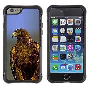 Fuerte Suave TPU GEL Caso Carcasa de Protección Funda para Apple Iphone 6 PLUS 5.5 / Business Style eagle hawk bald blue feathers majestic