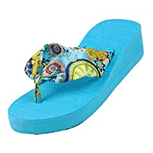 SODIAL(R) Summer bohemia flower Women flip flops platform wedges women sandals platform flip slippers beach shoes size 6 blue